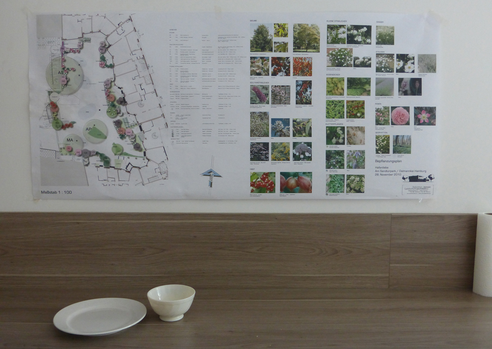 Residents continue to collaborate on the changing design of the shared garden – these plans were on display in the common house
